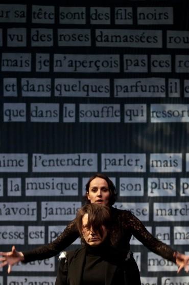 FOUS DANS LA FORET de Cécile Garcia Fogel